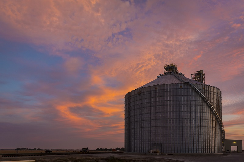 US grain giants ADM and Cargill enter deal to swap facilities